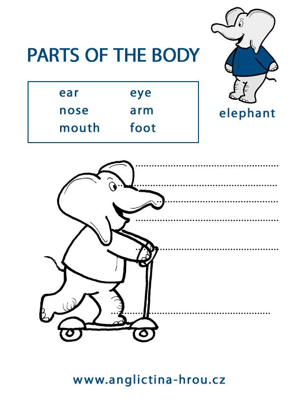 pracovní listy z angličtiny pro děti - části těla - Parts of the body